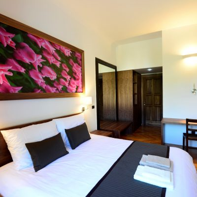 Galeria River - Double Room with River View